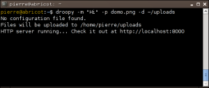 droopy-xterm-small Droopy, un nuovo tool Open Source per condividere file